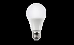 A19/BR/Par LED Bulbs (North America)