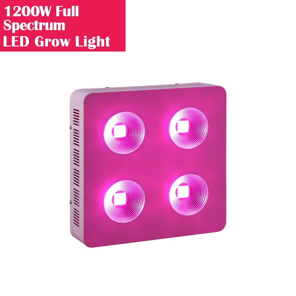 1200W High Power Full Spectrum LED Grow Lights with COB Reflector for Hydroponic and Medical Plant Cultivation