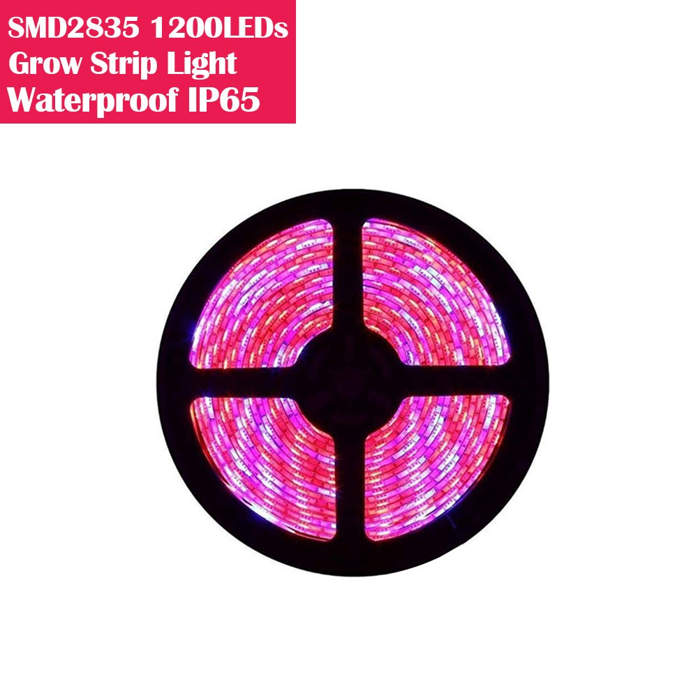 5M(16.4feet) Plant Growth LED Grow Light RED:BLUE/660nm:460nm DC12V SMD2835 LED Light Strip 120Watt Double Row LEDs
