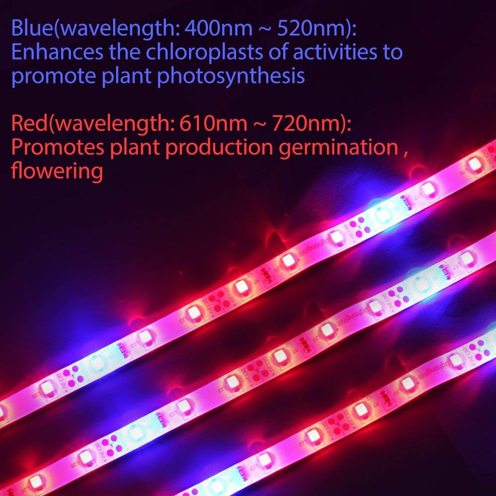 Germination Flowering Lamp Plant Grow light Greenhouse Stipulate Photosynthesis