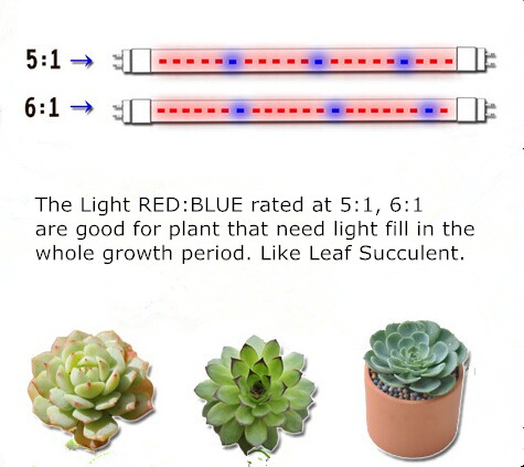 Plant Growth Led Grow Light Red Blue 660nm 460nm